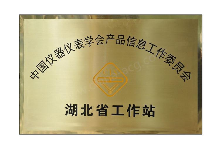 中国仪器仪表协会产信委湖北工作站